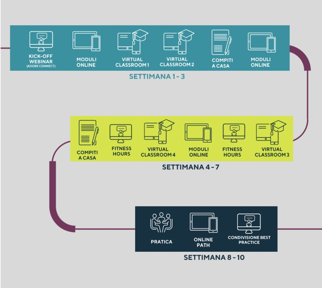 Esempio di Learning Path - Digital Learning Center | Mercuri
